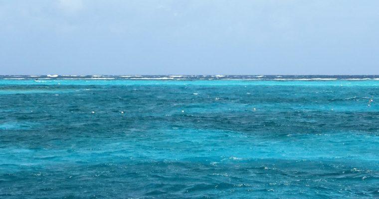 Union Island /Chatham Bay → Tobago Cays
