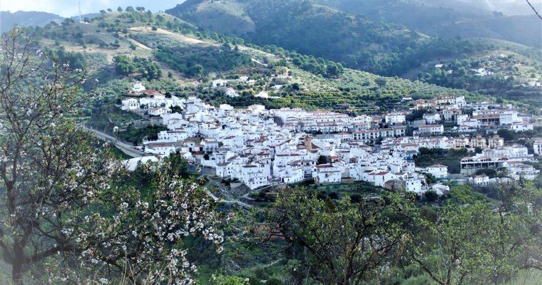 CANILLAS DE ALBAIDASTA NAUVOON
